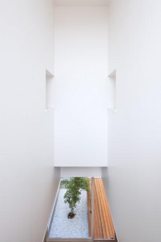 デザイナーズ 住宅 リビング 中庭 シンプル モダン 建築家