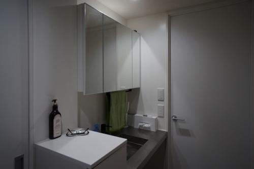 デザイナーズ 住宅 洗面 シンプル モダン リノベーション